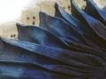 patrizia-casini-vento-di-mare-2013